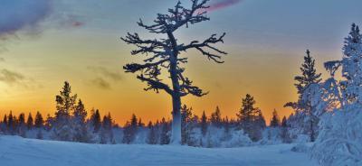 El lago Inari y la aurora boreal