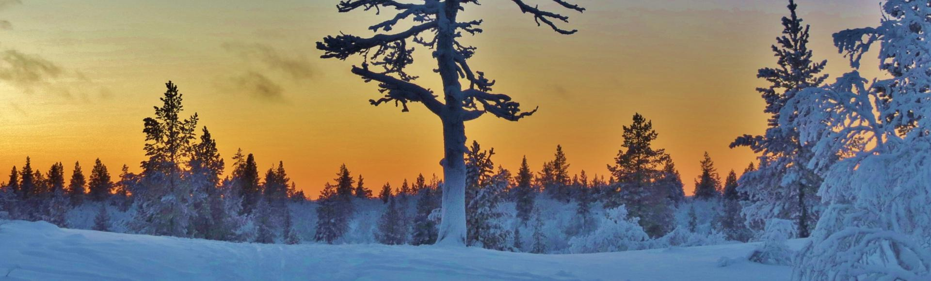 Finlandia y las auroras boreales