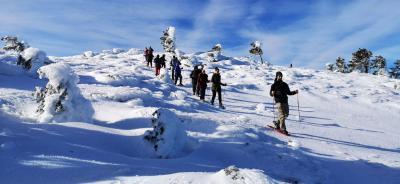 Raquetas de nieve en La Pinilla